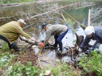 В Ути реализовали проект «Сибиряково озеро»